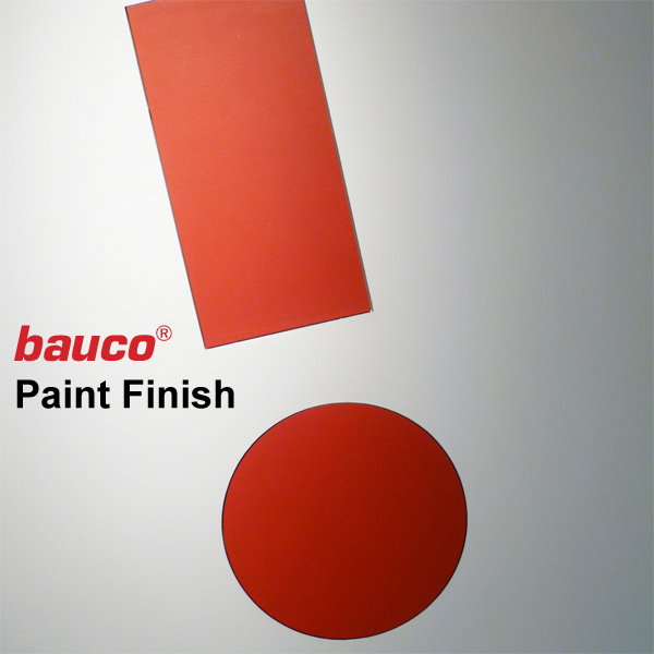 Paint Finish Access Panel